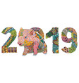 piggy with number 2019 for adults for vector image vector image