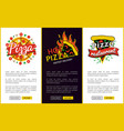 pizza and hot pizza delivery vector image