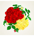 red and yellow rose with buds and leaves vintage vector image vector image