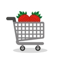 shopping cart with vegetarian food vector image vector image