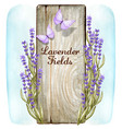 watercolor romantic wooden sign with lavender vector image