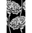 black and white seamless background with carnation vector image vector image
