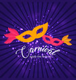 happy brazilian carnival day yellow and pink vector image vector image