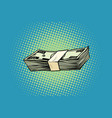 packing banknotes one hundred dollars vector image vector image