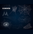 spider cobwebs various forms isolated set vector image