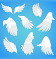 wings white bird feather icons vector image vector image