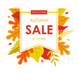 autumn sale banner template with bright colorful vector image