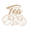 chamomile tea hand drawn engraving vector image