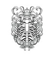 hand drawn of human ribs with baroque frame vector image vector image