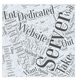 Need A Dedicated Server Word Cloud Concept vector image vector image