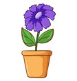 single flower in clay pot vector image vector image