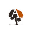tree letter a vector image