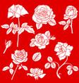 decorative rose flower set vector image