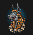 anubis mummy grinning fiercely vector image vector image