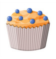 bluberry muffin dessert chcolate cupcake vector image vector image