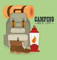 camping wild life with equipment vector image