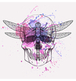 Grunge of human skull and dragonfly with wat