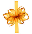 orange yellow transparent bow and ribbon vector image vector image