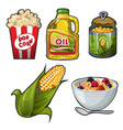 set of tasty and useful food of corn isolated on vector image