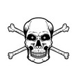 skull with crossbones isolated on white vector image vector image