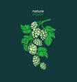 symbol hop natural beverage art shape design vector image