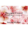tropical flowers watercolor background delicate vector image vector image