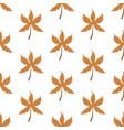 autumn leaves harvest pattern vector image