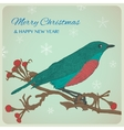 Christmas greeting card with bird sitting on twigs vector image vector image