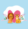 cute cartoon animals lion and tiger flowers heart vector image