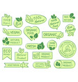green leaves labels eco healthy and natural vector image
