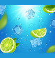 mojito cocktails ads with lime fruit and ice cubes vector image