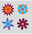 set flowers decoration on gray background vector image
