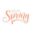 calligraphy lettering of hello spring in pink vector image