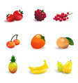 fruit and berries set vector image