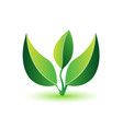 green leafs- healthy plant logo vector image