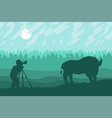 photographer photographs walking bizon on field vector image