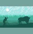 photographer photographs walking bizon on field vector image