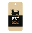 poster pet shop design label lancashire heeler vector image vector image