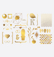 Set of gold elements for design vector image