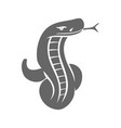 snake character logo template isolated vector image vector image