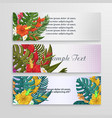 tropical flower backgroundbannertemplate vector image vector image