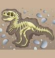 tyrannosaurus excavation site vector image vector image