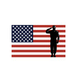 American Solder Serviceman Saluting vector image vector image