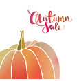 autumn sale promo banner with pumpkin vector image vector image