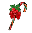 Christmas cane with red berries isolated on white vector image