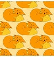 funny Fox pattern vector image vector image