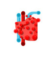 infection with coronavirus heart red virus vector image vector image