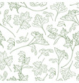 natural seamless pattern with parsley leaves hand vector image vector image
