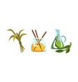 spa symbols set aroma sticks bottle oil vector image vector image