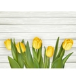 Yellow tulips with copy space EPS 10 vector image vector image